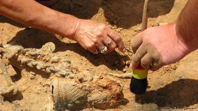 اكتشاف حفريات لأقدم الثدييات في العالم
