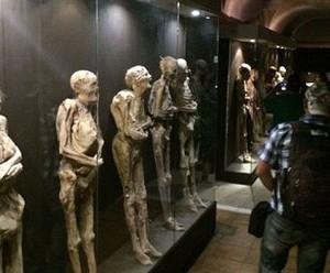 متحف الرعب