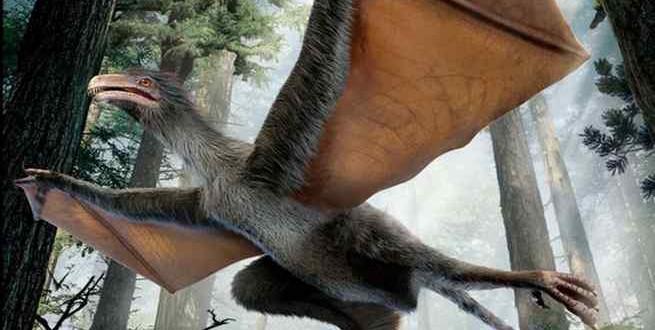 اكتشاف ديناصور خفاش في الصين
