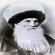 الإمام شامل أسد القوقاز
