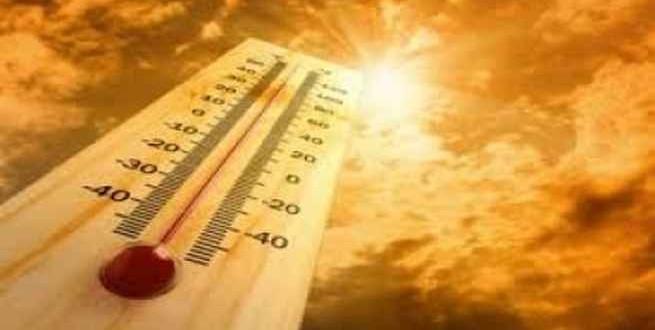 موجة حارة تودي بحياة أكثر من 430 شخصا