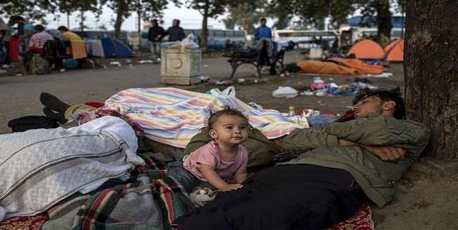 محافظ بلجيكي: لا تُطعموا اللاجئين