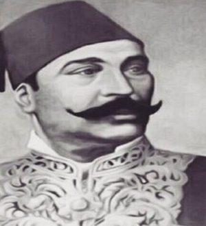 mahmoud-samy