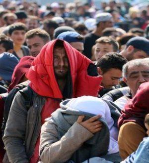 refugees_ap