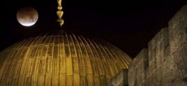 شكل سيدنا موسى عليه السلام كما رآه النبي في الإسراء والمعراج