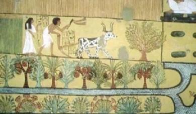 اكتشاف أثري يشرح تفاصيل الحياة اليومية في مصر الفرعونية