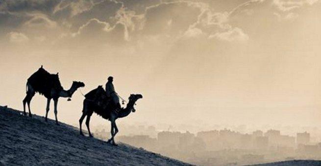 هل حاول أبو بكر الصديق أن يهاجر للحبشة منفردا؟